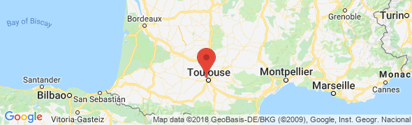 adresse endoscope-flexible.42stores.com, Beauzelle, France