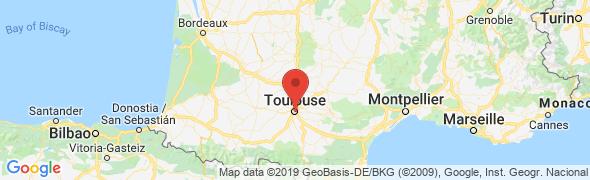 adresse pierreafeutretattoo.com, Toulouse, France