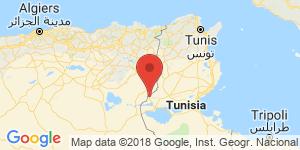 adresse et contact Hôtel Tamerza Palace, Tamerza (Gouvernorat de Tozeur), Tunisie
