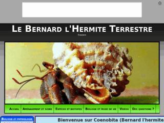 http://coenobita.e-monsite.com/