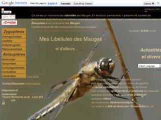 http://www.meslibellules.fr/