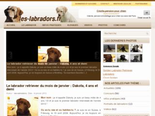 http://www.les-labradors.fr/