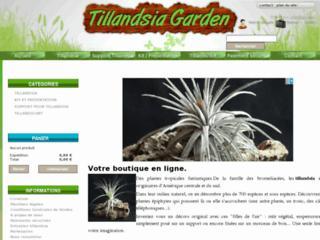 http://www.tillandsia-garden.com/