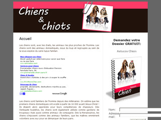 http://www.chiens-et-chiots-infos.com/