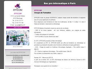 http://www.bac-pro-informatique-paris.com/