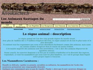 http://www.animaux.arroukatchee.fr/