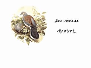 http://les-oiseaux-chantent.net/
