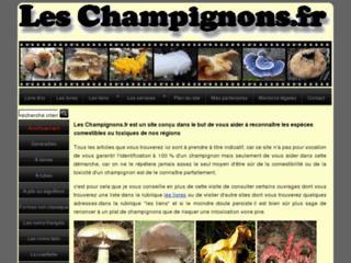 http://leschampignons.fr/