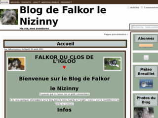 http://falkor-nizinny.fr/