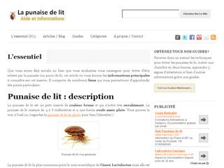 https://www.la-punaise-de-lit.com/