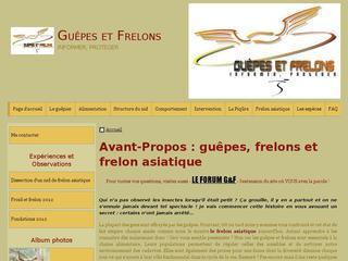 http://guepes_frelons.e-monsite.com/