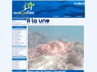 http://www.auxbulles.com/
