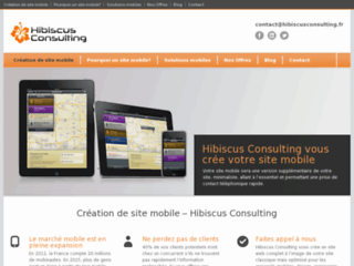 http://www.hibiscusconsulting.fr/