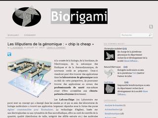 http://www.biorigami.com/