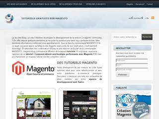 http://www.magentoblog.fr/