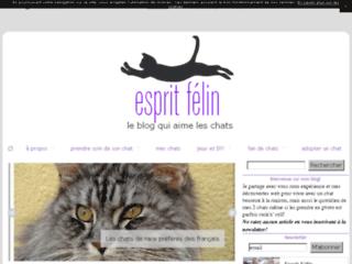 http://espritfelin.canalblog.com/