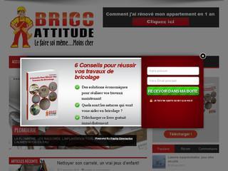 http://bricoattitude.fr/