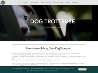https://www.dog-trotteuse.fr/
