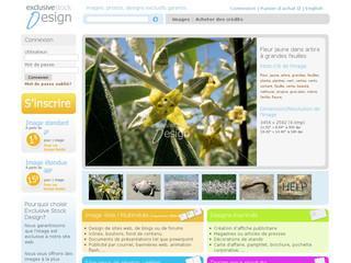 http://www.exclusivestockdesign.com/