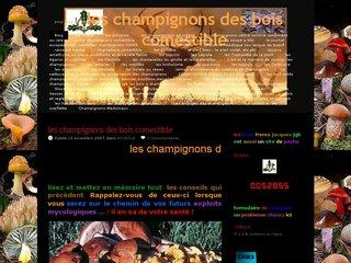 http://lestroisfreresjgb.unblog.fr/